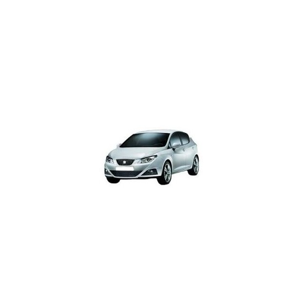 Pack of LEDs for Seat Ibiza 6J (2009-2014)