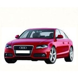 Pack of LEDs for Audi A4 B7 (2004-2008)