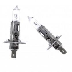 Lampen H1 halogen 12V 55W