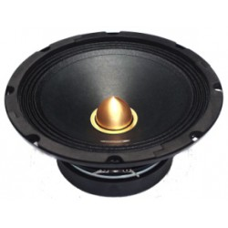 "Half of 10"", 200 w rms/500 w max - Type 12"