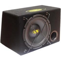 """Caja bass reflex 12"""".1.000 w max - 250 w rms"""