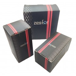 Coppia di lampade D3S 6000k ZesfOr® per la sostituzione xenon originale