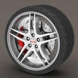 Protettore per pneumatici - argento RimSavers®