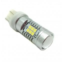 Bulbo claro do diodo EMISSOR de luz T20 Duplo Polo - Tipo 54