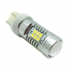 led t20 double-pole