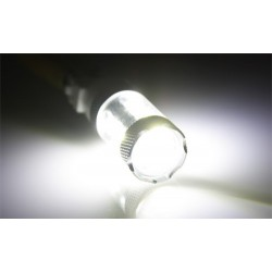 Bulbo claro do diodo EMISSOR de luz T25 CANBUS - TIPO 79