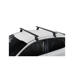 2 roof Bars