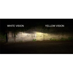 h1 yellow