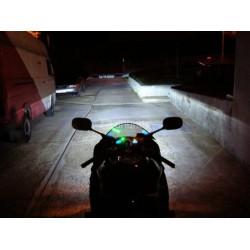 xenon moto