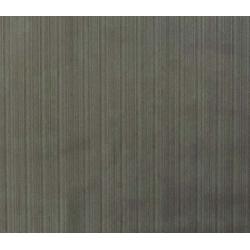 film hidroimpresión Titanio Cepillado