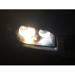 bulbs h9 car