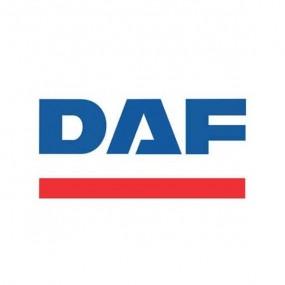 Boutique De Tapis Daf Comme