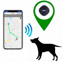 GPS locator Pet