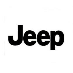 Diagnosis Jeep