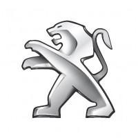 Defletores Derivabrisas Peugeot