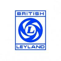 Defletores Derivabrisas Austin British Leyland