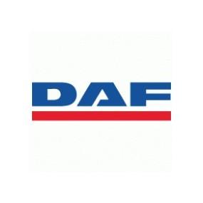Windabweiser Daf Derivabrisas