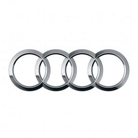 Browser-Bildschirm Audi - Corvy®