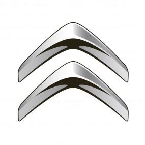 Browser-Bildschirm Citroen/Peugeot - Corvy®