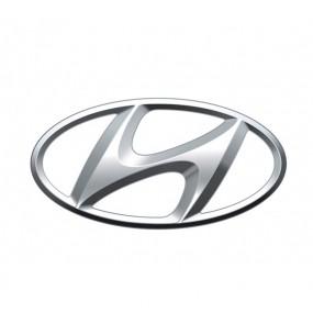 Browser-Bildschirm Hyundai - Corvy®