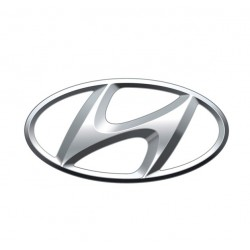 Specific browsers Hyundai