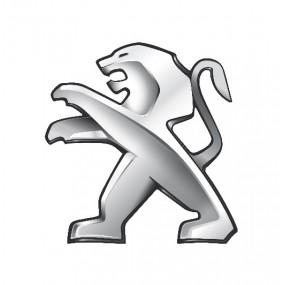 Browser-Bildschirm Peugeot - Corvy®
