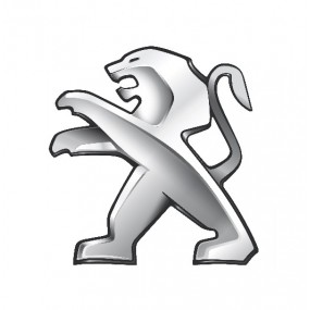 Accessori Peugeot | Audioledcar.com