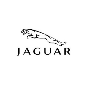 Diagnosi Jaguar OBD2 |Offerte-30%