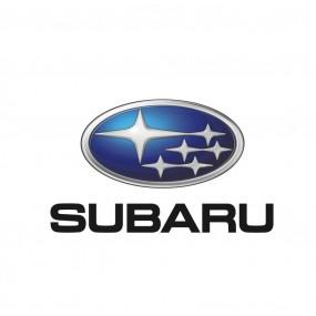 Diagnosi Subaru OBD2 |Offerte-30%