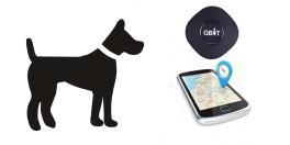 Localizador GPS animais de Estimação